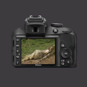 Nikon1-300x300 PORTFOLIOS