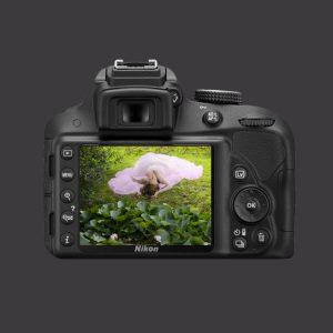 Nikon7-300x300 PORTFOLIOS